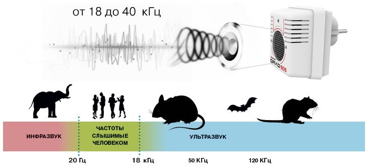 """""""Град 505"""" работает в неслышимом для людей и домашних животных ультразвуковом диапазоне частот"""