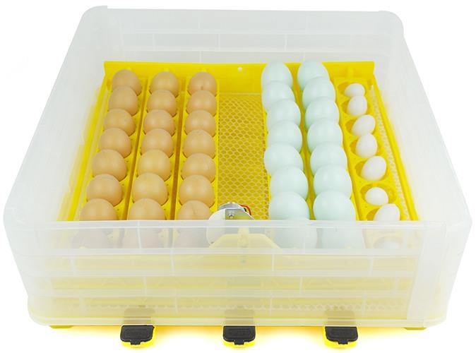 Автоматический инкубатор для яиц SITITEK 96