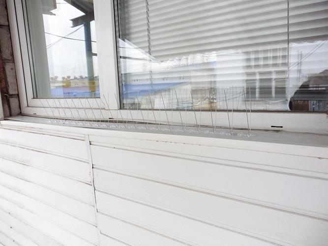 """Шипы модели """"SITITEK Барьер-Премиум 2"""" на карнизе окна: вид 2"""