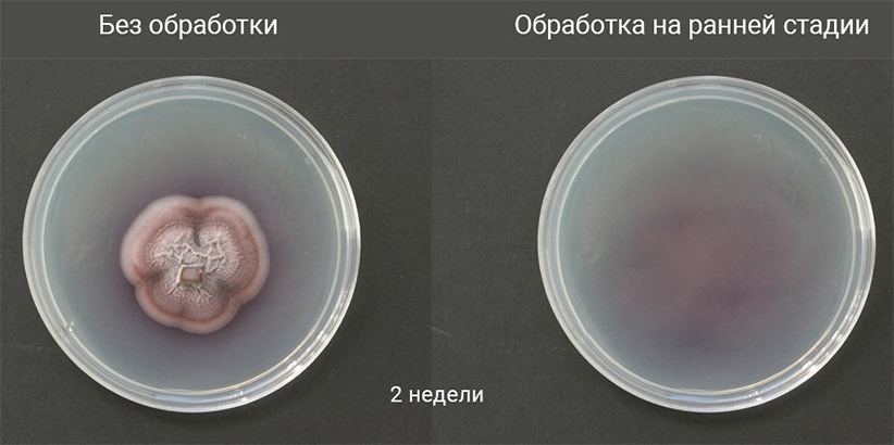 Портативный стерилизатор