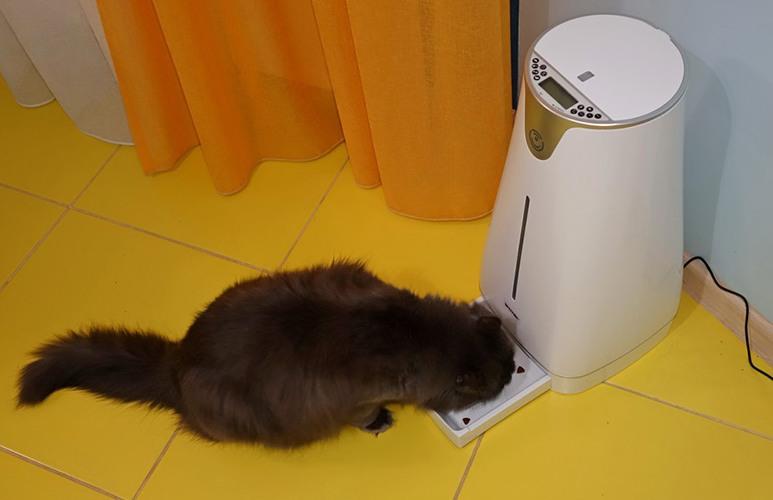 """Автокормушка """"SITITEK Pets Prо"""" не даст Вашему питомцу остаться голодным в отсутствие хозяина"""