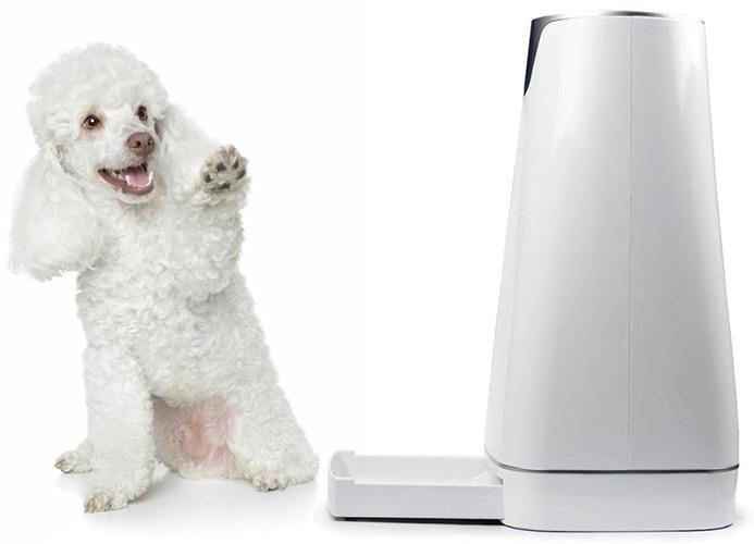 SITITEK Pets Pro накормит не только кошек, но и собак
