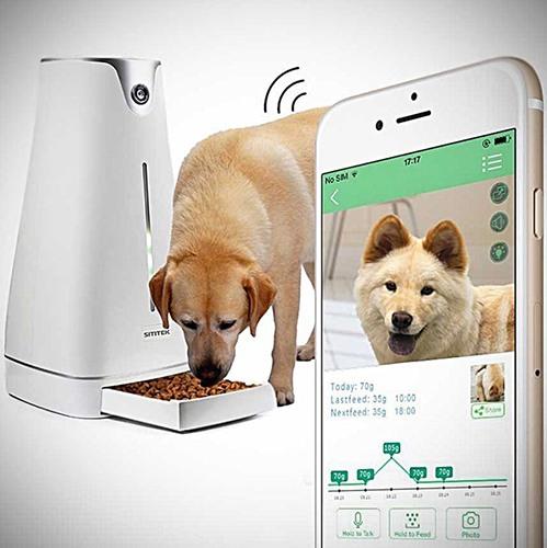 С помощью автокормушки SITITEK Pets Prо Plus вы сможете не только кормить кошек и собак, но и наблюдать за своими домашними животными