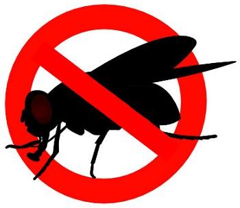 """Использование отпугивателя — гораздо более простой, эффективный и гуманный способ избавиться от надоедливых мух, нежели регулярная """"охота"""" на них с мухобойкой"""
