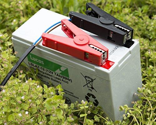Используйте для запитывания электронной изгороди любую 12-вольтовую батарею
