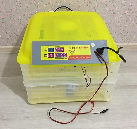 Яйца хорошо видны сквозь верхнюю крышку и стенки инкубатора (нажмите на фото для увеличения)