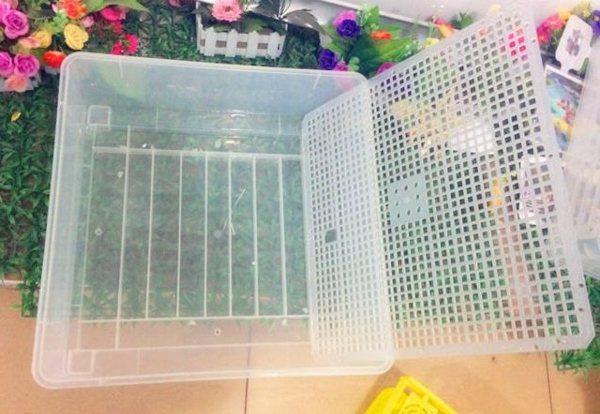 На дно уложена специальная решетчатая подставка для яиц