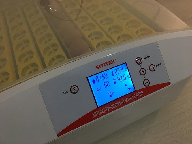 """Автоматический инкубатор для яиц """"SITITEK 56"""""""