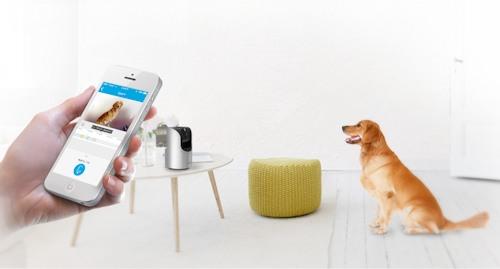Двусторонняя аудиосвязь позволяеть поговорить с человеком  или успокоить домашнего питомца