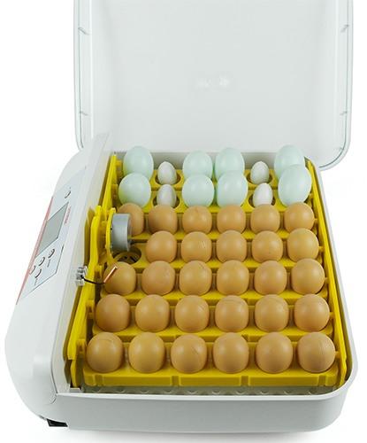 """Автоматический инкубатор для яиц """"SITITEK 40"""""""