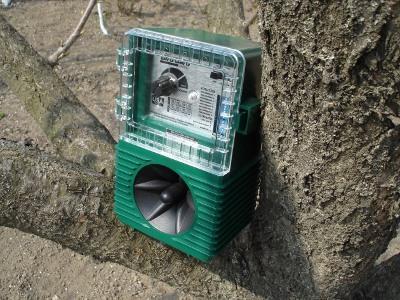 Биоакустический отпугиватель птиц AntiBird Pro, установленный на дереве