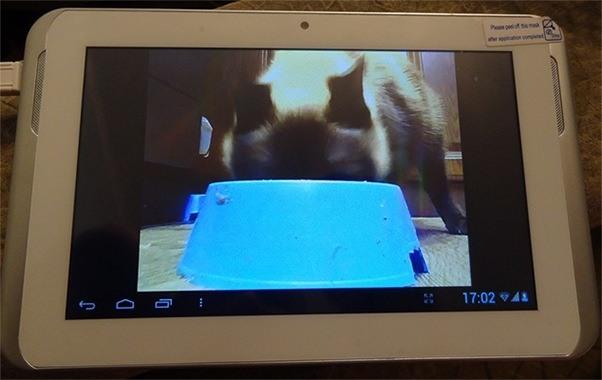 Наблюдение можно вести на ЖК-экране любого размера (на ваше усмотрение) — так как монитором для видеоняни служат устройства на базе iOS