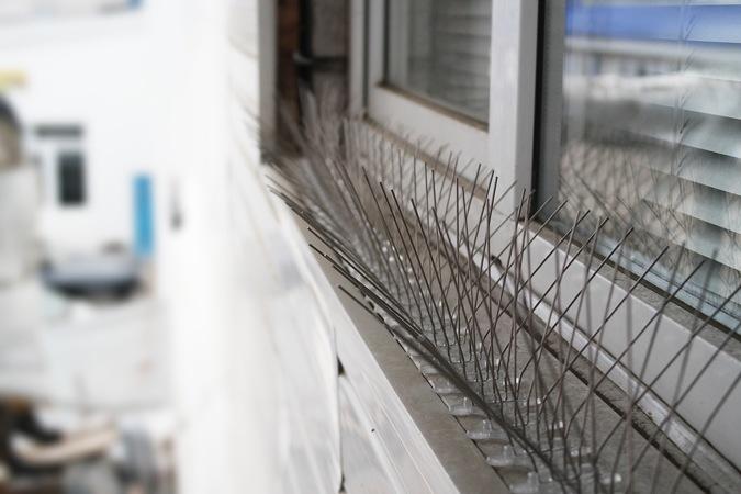 """Антиприсадные шипы """"SITITEK Барьер-Премиум"""", установленные на окне"""