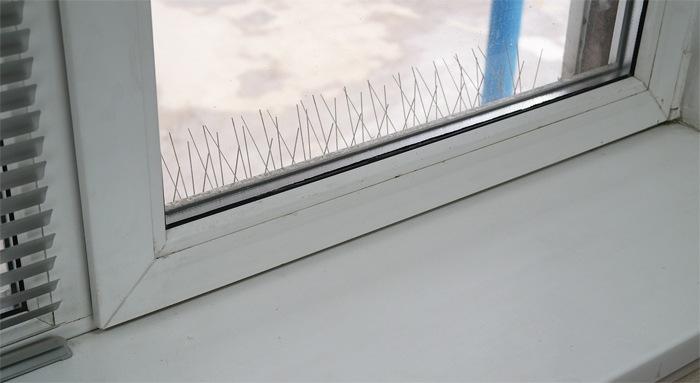 """Антиприсадные шипы """"SITITEK Барьер-Премиум"""" установленные на карниз, из комнаты практически не видны"""