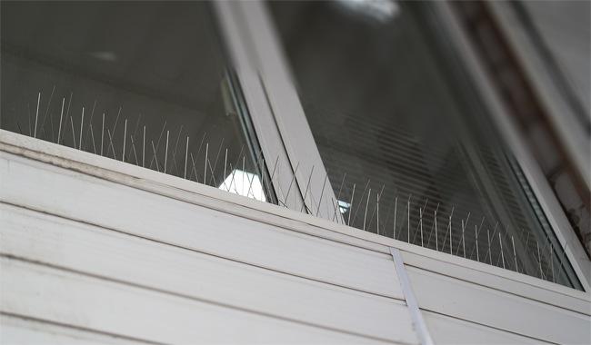 """Антиприсадные шипы """"SITITEK Барьер-Премиум"""" не портят внешний вид зданий, не мешаются и мало заметны на расстоянии"""