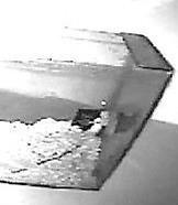 Видеоэксперимент по тестированию эффективности отпугивателя грызунов и кротов ГРАД А-550УЗ